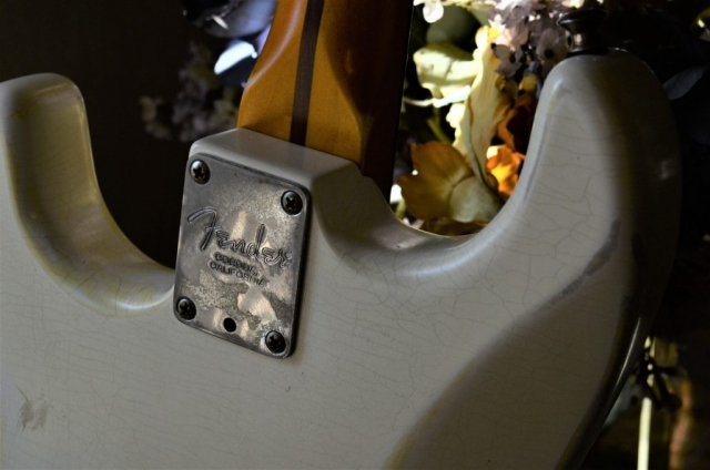 Finish Checking Fender Stratocaster Aged Neck Plate Relic White Guitarwacky.com