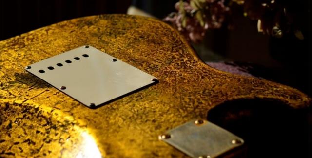 Rear Cover Fender Stratocaster Custom Gold Leaf